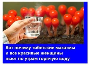 О пользе горячей воды
